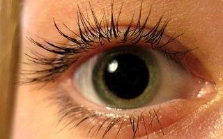 Глазные капли Цикломед: инструкция по применению, дозировка и форма выпуска