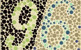 Проверка зрения на цветовосприятие для водителей — когда и как проводится