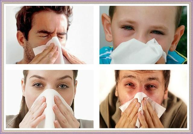 Аллергия на веках глаз: лечение, лучшие методы и препараты, профилактика