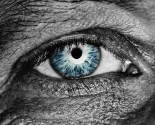 Стиллавит капли для глаз - состав, показания, советы по применению