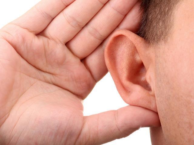 Каково значение органа слуха: слуховая система человека