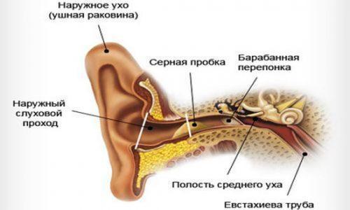Пробки в ушах: что делать если в ухе серная пробка