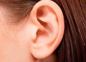 Сломанное ухо: признаки и первая помощь
