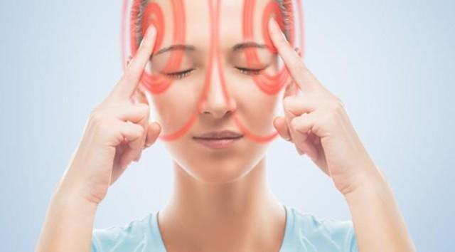 Преддверно-улитковый нерв: анатомия органа
