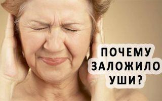 Закладывает уши и кружится голова: причины и лечение