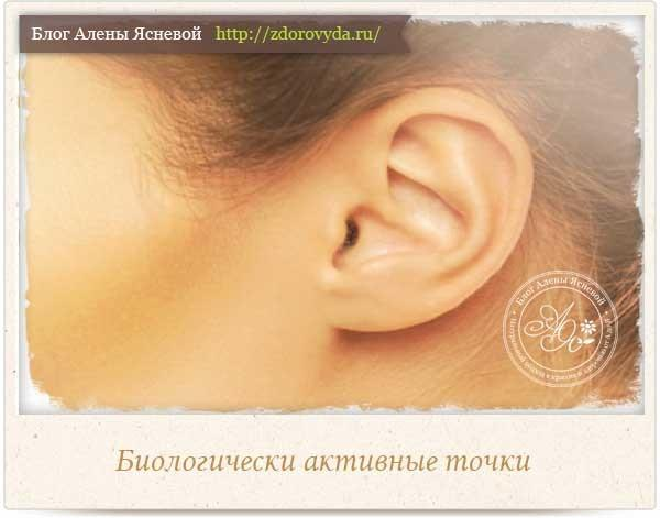Точки на ушах: акупунктура уха